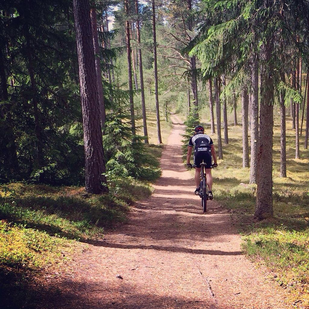Turtips mtb – 13 km slingan vid IK Jarl
