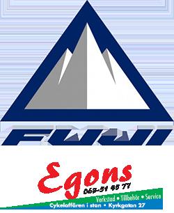 Fuji-Egons_250