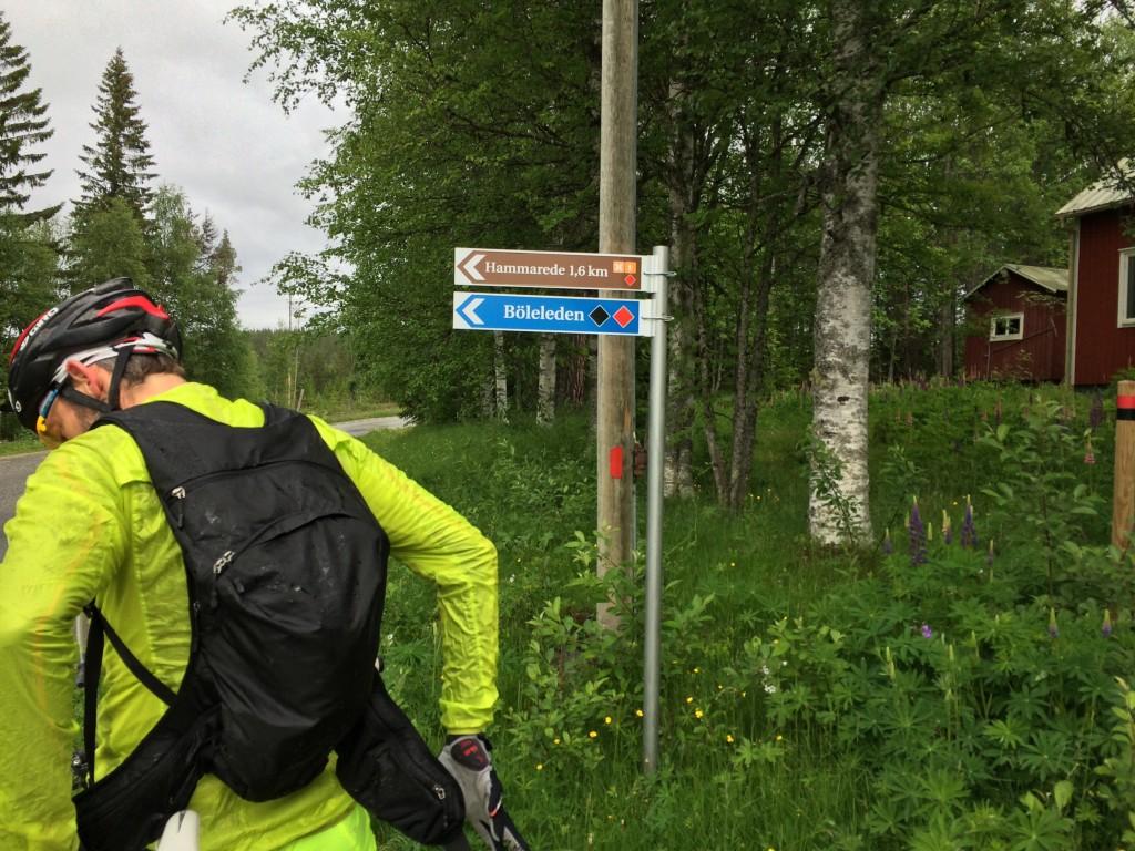 Där leden passerar över vägen i Böle.