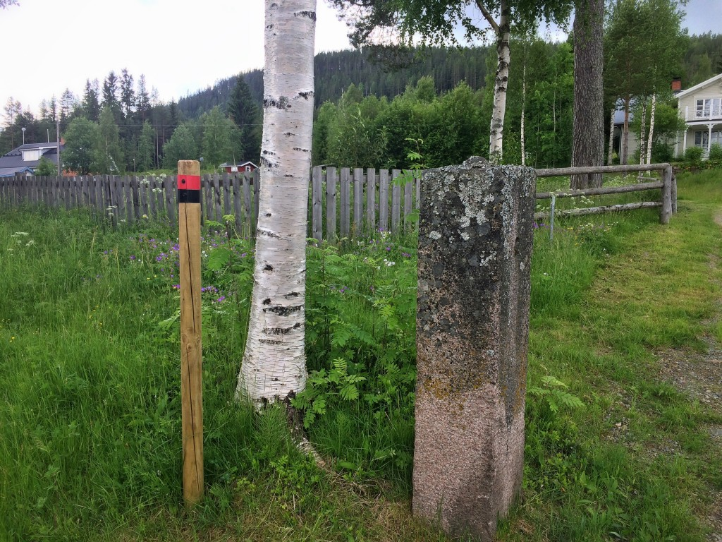Om du vill cyklar du längs med staketet. Jag tror att det är rätt. Pinnarna tar slut här nämligen.