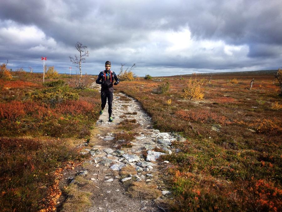Turtips-Löpning Storhogna och Fallmoran.