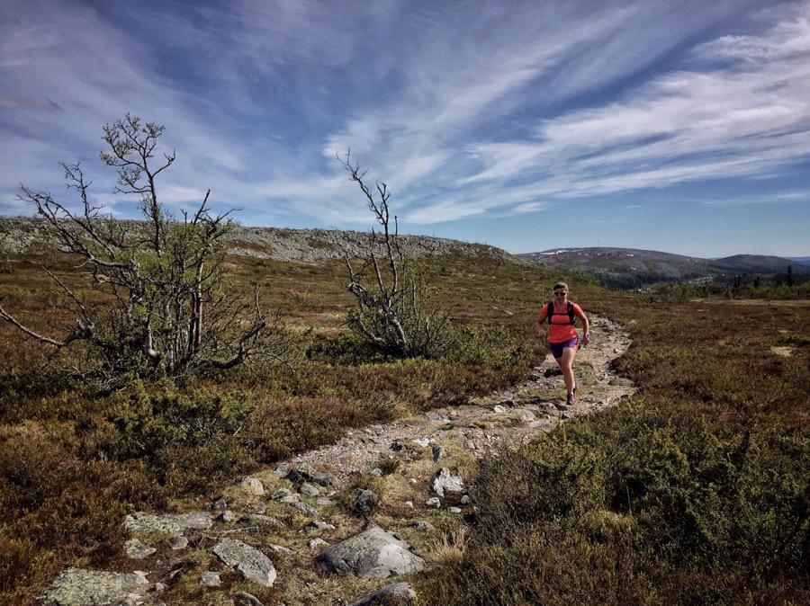 Turtips- Löpning Jaktstugan via Fallmoran