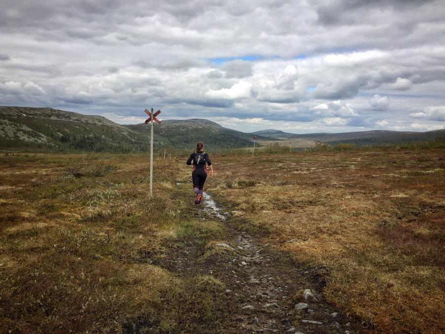 traillöpning