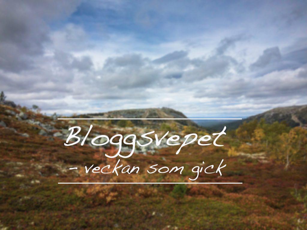 bloggsvepet1