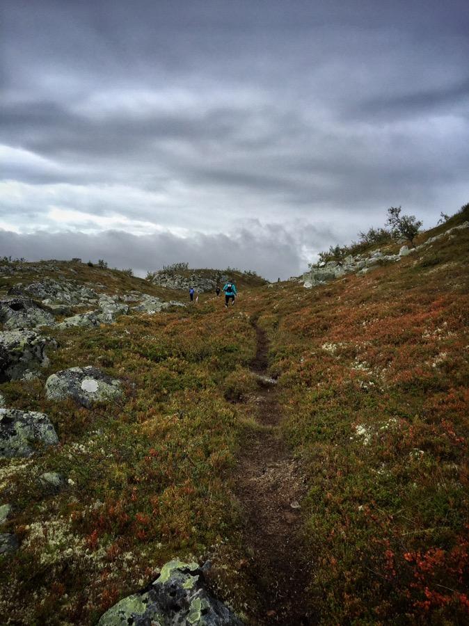 fjällmaraton 11km