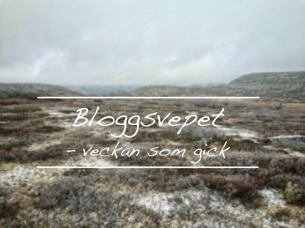 bloggsvepet2