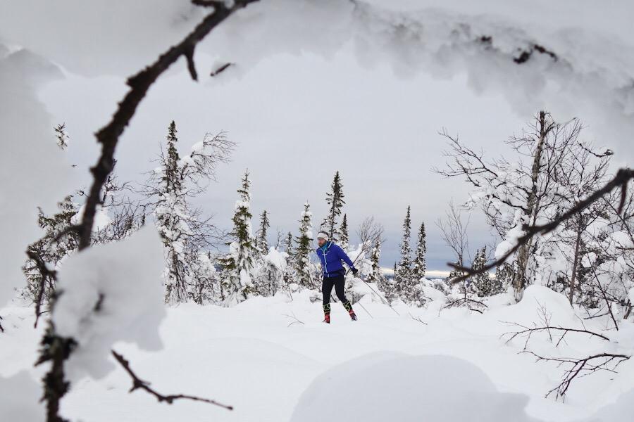 Vintertips i Vemdalsområdet – 6 saker du inte får missa!
