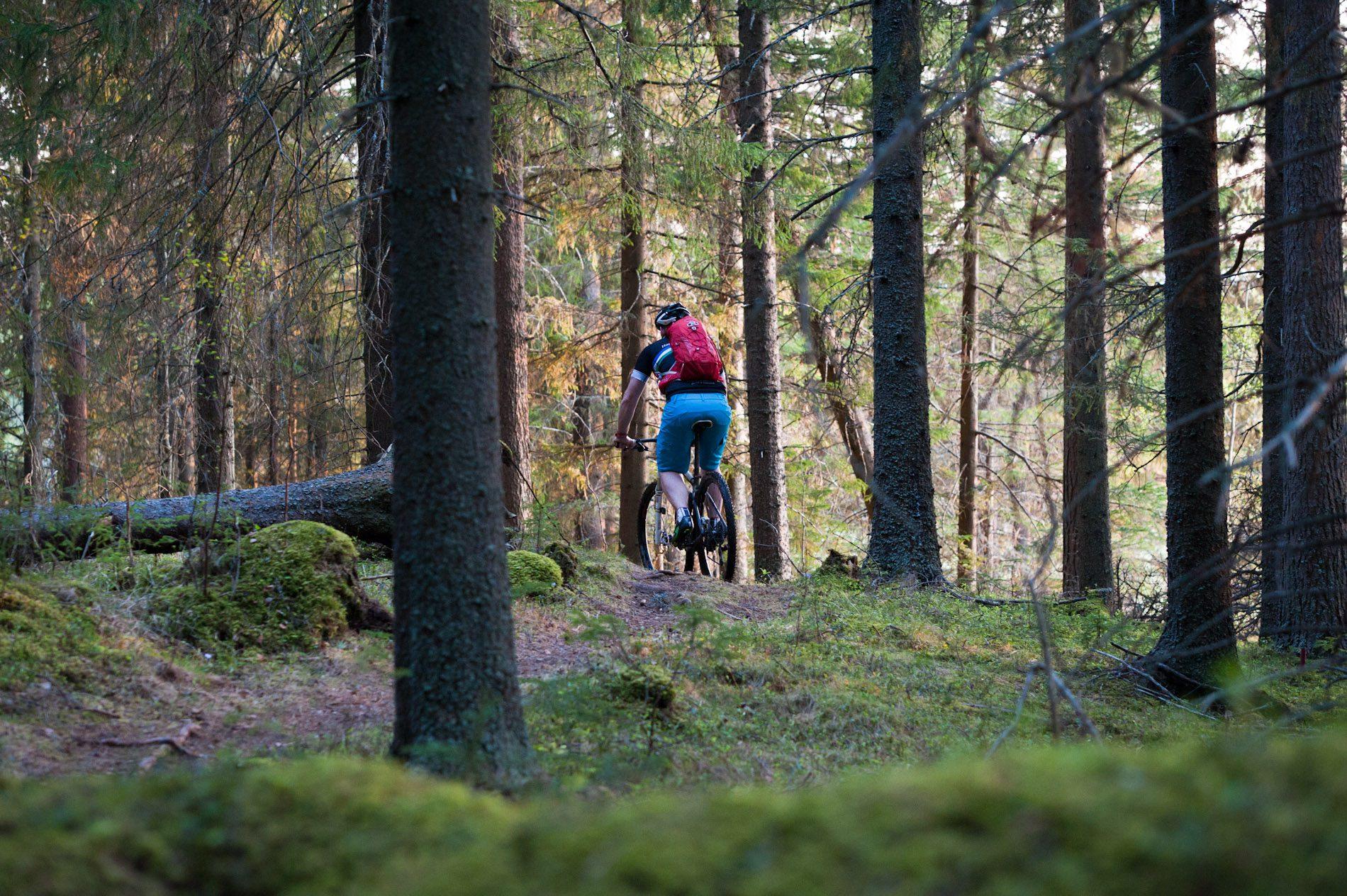 Mountainbike SM i Östersund – upplev den fina stigcyklingen i området